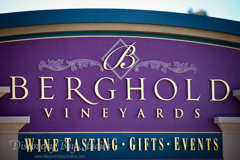 Berghold Winery, Lodi Wedding Venue & Reception. Wedding Photographers