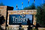 Triolgy Los Meganos at the Vineyards Wedding Venue & Reception. Wedding Photographers.