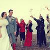 Confetti on Cley Beach