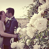 Cley Windmill Wedding Photography through the beautiful roses