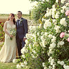 The roses in July at Cley Windmill on a couples wedding day