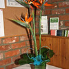 An exotic wedding with birds of paradise flowers at a wedding at Dairy Barns