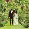 Walking through the Rose Pergola at an Elms Barn Wedding - how beautiful