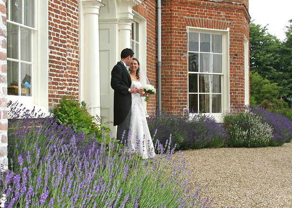 Stunning Lavendar at the front of Elms Barn outside the main house