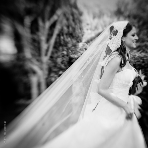 Lebanese Wedding Photographer New York Wedding Photographer