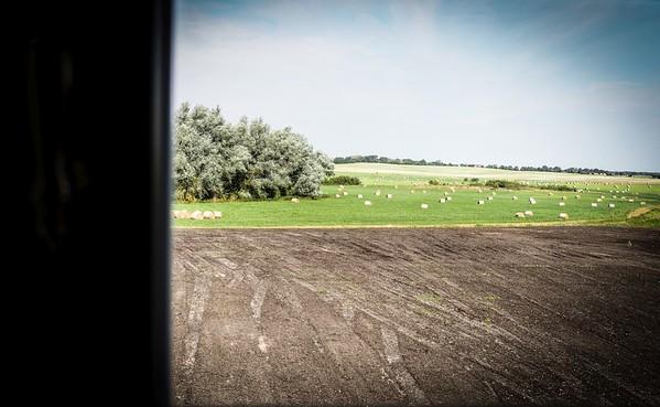 Blick aufs Feld - Ulrichshusen