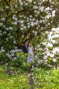 Angela-Mark-Clyne Gardens-017