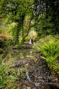 Angela-Mark-Clyne Gardens-006