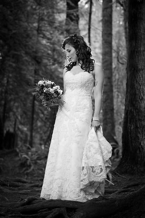 Tasha - A Bride In The Forest - Toad Hollow Wedding Photography