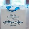 Adam and Ashley: Wedding