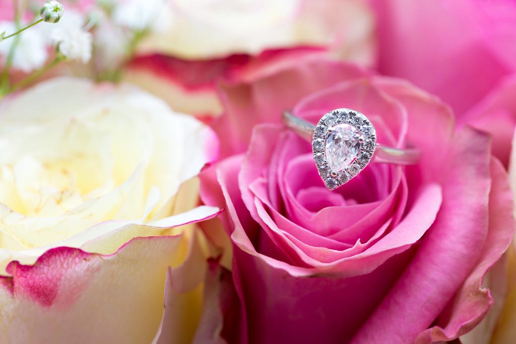Weddings / Engagements / Anniversaries