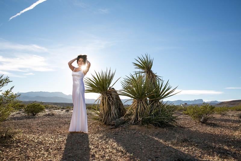 Nevada desert Bridal Session