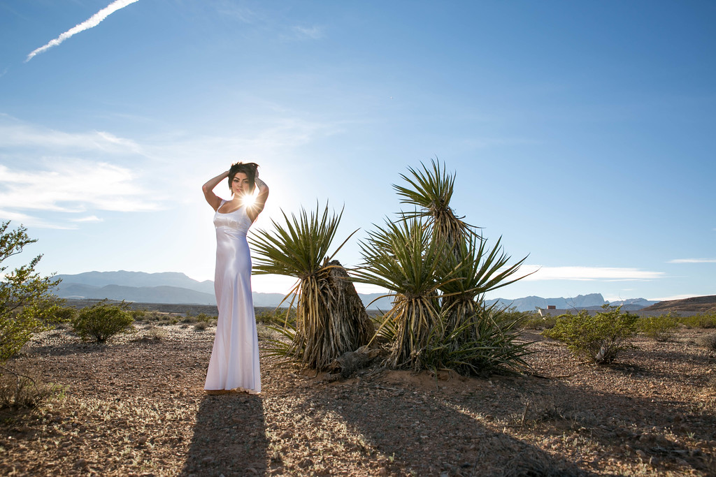 Nevada desert Bridal Session