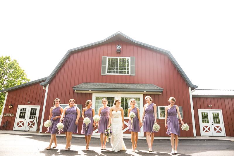 Rustic Manor Wisconsin Wedding