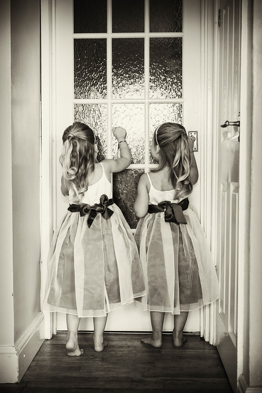Twin bridesmaids