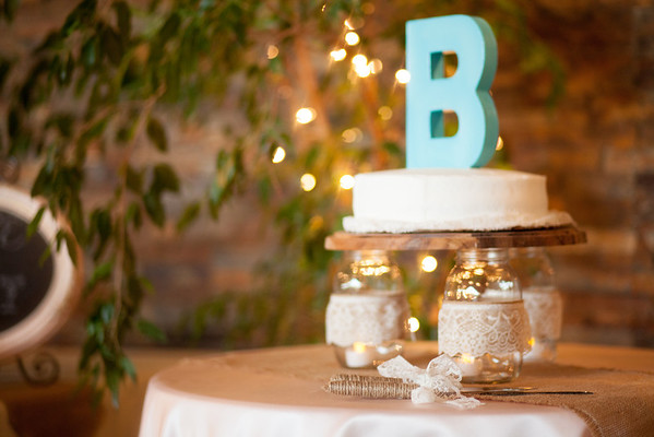 Tyler Shearer Photography Justin and Sasha Wedding Day--2