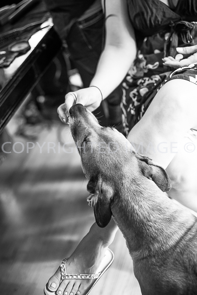 untitled (23 of 397)