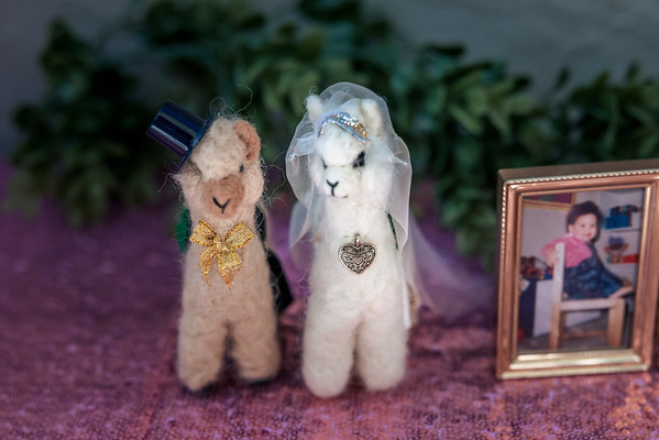 Jenny&Pedro-Wedding-Reception-012-0233