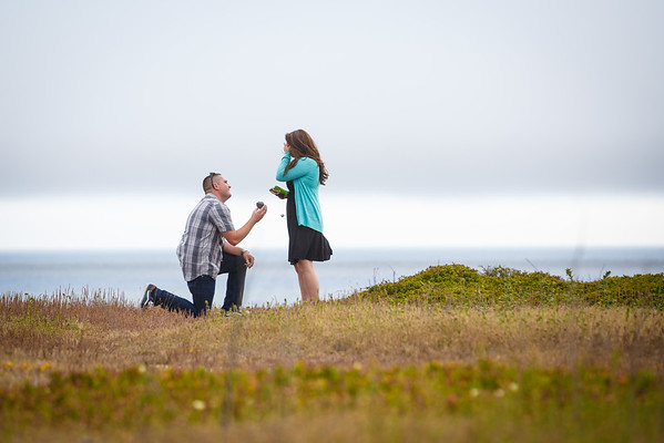 Katie&Christian-Proposal-June 27 2015-004