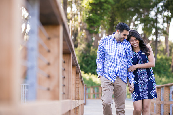 Rahul&Shweta-Engagement-021