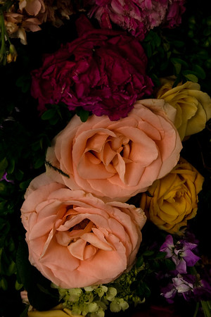 Morning After Flowers_Leslie-Dawson