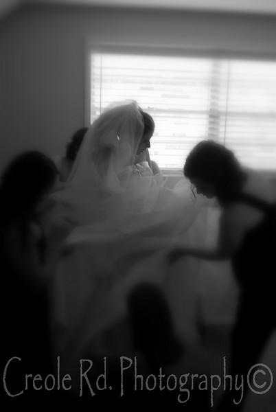Wedding 8-08-29