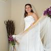 Wedding 8-08-328