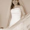 Wedding 8-08-329