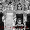 DSC_3997bw-Kimberly Gall and Bryce Apilando wedding-Senator Fong's Plantation Gardens-Pulama Road-Kaneohe-Hawaii-January 2013