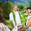 IMG_2493-Selene and Eric wedding-Lyon Arboretum and Botanical Garden-Manoa-Oahu-Hawaii-March 2012