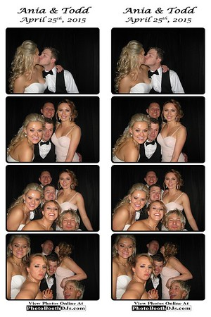 04/25/2015 Ania & Todd Wedding (PhotoStrips)