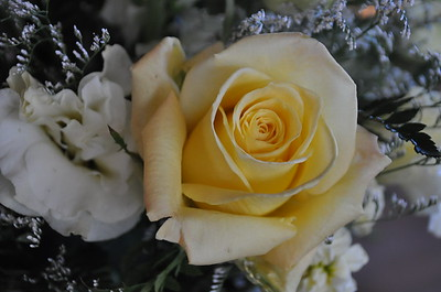 Wedding_0038