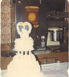 1981-3-28 Valerie and Karl 03 Le Cake Parker-Hall Wedding