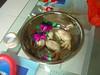 ...and prepared items of dumpling dough