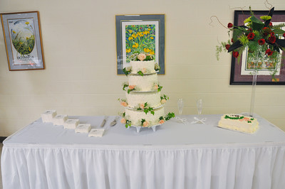 Vivan & Dennison Woods Wedding Reception June 27, 2009