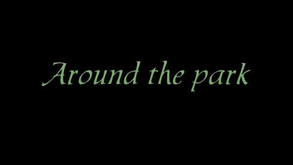 AroundPark