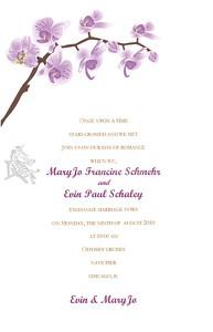 MaryJo & Evin Wedding_003