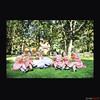 reno wedding_Page_059