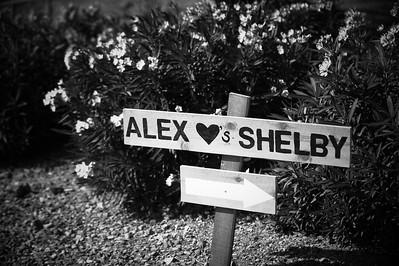 ShelbyAlex-1004