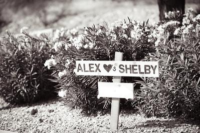 ShelbyAlex-1006