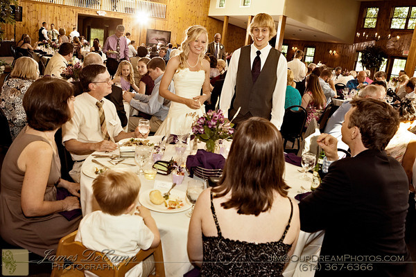 The wedding reception of Annie Busher and Aaron Powell held Saturday June 9, 2012 at the Hickory Lakes Event Center in Pickerington, Ohio. (© James D. DeCamp   http://OurDreamPhotos.com   614-367-6366)