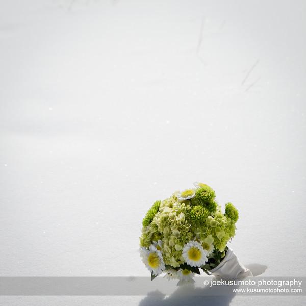 jk1301dsb01-095