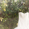 0006-131116-sierra-jarrett-wedding-8twenty8-Studios