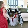 M&J Pre-ceremony  (64)