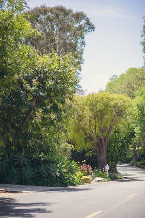 palos-verdes-backyard-wedding1001