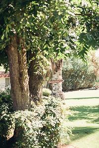 cree-estate-palm-springs-wedding1010