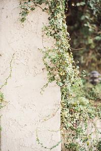 cree-estate-palm-springs-wedding1011