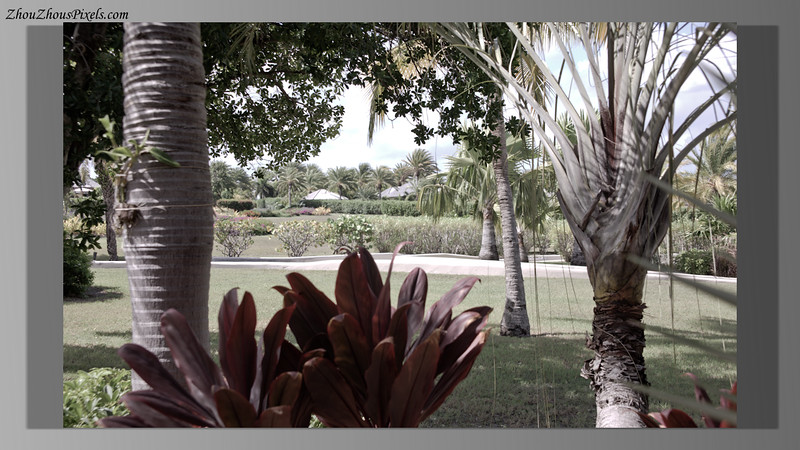 2015_10_10-2 (Jumby Bay) Slideshow-2-010