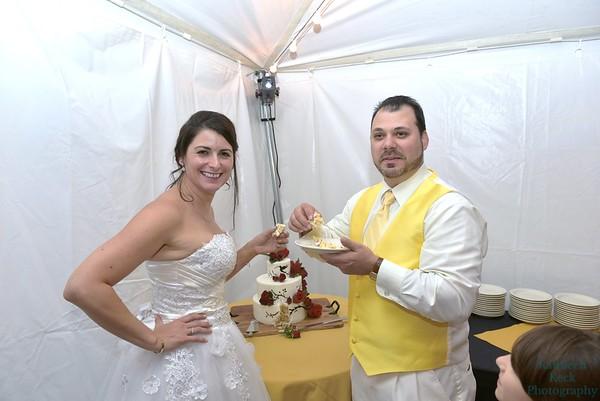 9-3-16 Nina & Tom Cake  (13)