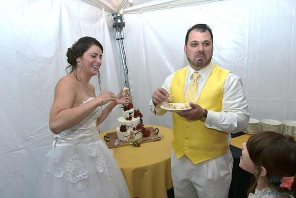 9-3-16 Nina & Tom Cake  (14)